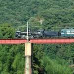 秩父鉄道SLパレオエクスプレスの絶景撮影ポイントを教えます