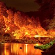 東海 紅葉 ライトアップ