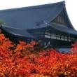 京都 紅葉 東福寺 混雑