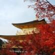 京都の紅葉情報まとめ